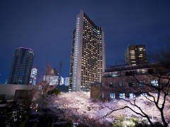 ANA Inter-Continental Tokyo